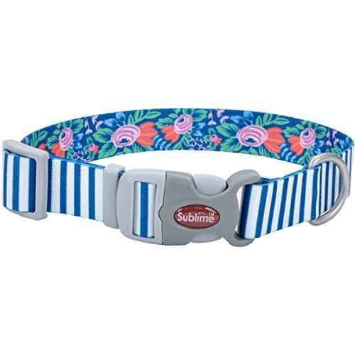 Coastal Sublime Hundehalsband, Verstellbar, Blaugrün Streifen mit Blumen, Hals Größe 12x 18, 1