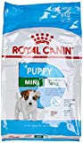 Royal Canin Royal Canin Mini Junior , 1er Pack (1 x 8 kg)