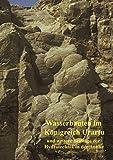 Wasserbauten im Königreich Urartu und weitere Beiträge zur Hydrotechnik in der Antike: Band 5 der Schriften der Deutschen Wasserhistorischen Gesellschaft (DWhG) e.V.