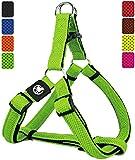 DDOXX Pettorina Cane Step-in Air Mesh, Imbottito, Regolabile | Tanti Colori e Taglie | per Cani Piccoli Medi e Grandi | Imbracatura Gatti Cuccioli Gatto Taglia Piccola Media Grande | Verde, S