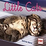 Little Cats (Geschenkbücher) by Sylvia Born(30. September 2011)