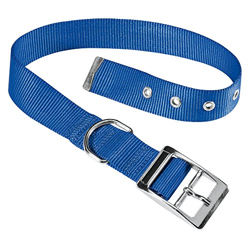 Ferplast 75267825 Club Cf25/53 Collare Forato per Cani in Nylon Club con Fibbia in Metallo A:45 x 53 cm, B:25 mm, Blu