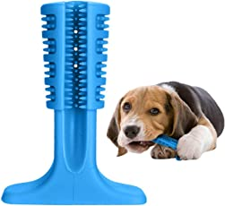 VANUODA Hunde Brushing Stick, Hunde Zahnbürste Zahnpflege, Kauen Zähne Putzen Spielzeug für Hunde, Katzen, die Meisten Haustiere, Geschenk für Haustiere Liebhaber