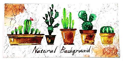 MI RINCON Cuadro Madera Vintage Cactus Beautiful Background