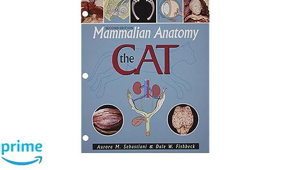 Mammalian Anatomy: The Cat: Amazon.co.uk: Aurora M Sebastiani, Dale ...