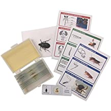 48pcs Animals Insects Plants Flowers Plastic Prepared Microscope Slides Set + 1 pc Real Butterfly Specimen Children Student Science Education Toy