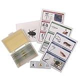 WhizKidsLab Kit da 12 Dispositive di Parti d'Insetto Set per il Microscopio + Vero Esemplare di coleottero + Cartoline STEM Kit Scientifico