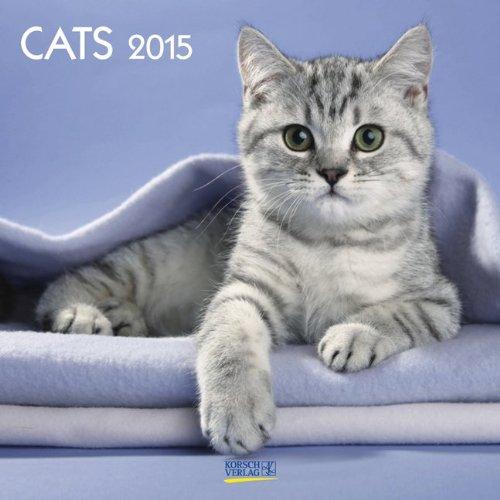 Cats 2015. Broschürenkalender