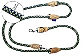 PROFTI Hundeleine aus Nylon, Lederelemente, 4fach verstellbar, große/kleine Hunde, 230cm lang, robust/schwer, Blau/Grün