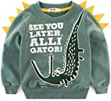 Miscoloor Boys Sweatshirt Cotton Jumper for Kids Dinosaur Crocodile Grizzly Top Casual Pullover Long Sleeve T Shirt Toddler Clothes