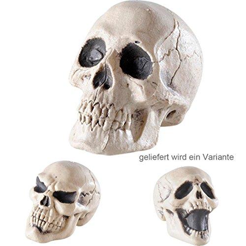 Totenschädel Totenkopf Schädel Halloween Deko Skelett Dekoration Dekoschädel Totenkopfschädel (Totenschädel Halloween)