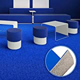 Floori Premium Nadelfilz Teppich, GUT-Siegel, emissions- und geruchsfrei, wasserabweisend, 1200 g/qm | Größe wählbar (600x200cm)
