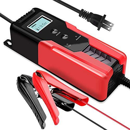 LOOMBNB Caricabatterie e Mantenitore per Auto Intelligente Batteria Caricabatteria 4A 6V/12V