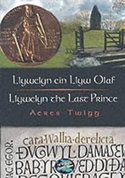 Cyfres Cip ar Gymru / Wonder Wales: Llywelyn ein Llyw Olaf: Llywelyn the Last Prince