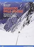 Ghiaccio delle Orobie. Itinerari con picozze e ramponi nelle Alpi Orobie, Presolana, Grigne, Concarena, Resegone