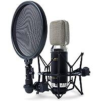 Marantz Professional MPM-3500R | Premium Ribbon Microphone With Ultra Low-Mass Diaphragm, Integrated Pop Filter/Shock Mount And Aluminium Case