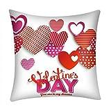 UFACE Mixtes Housses de Coussin La Saint - Valentin Imprimé Love Doux Carré 45x45 Zip démontable Lavables pourlaMaisonConfortable Taies d'oreillers décoratives,Cadeau de Valentine's Day...