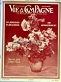 vie a la campagne numero extraordinaire no 101 du 15 10 1936 sommaire splendides floraisons en appartement de la joie chez vous par albert maumene c ?est un jeu d enfants frontispice joies et privileges des floraisons chez vous ces plantes existent plantes d interieur plantes eduquees adaptation au milieu attirance lumineuse courts descriptifs maisons fleuries madame mademoiselle monsieur lumiere et floraisons des plantes eclairage artificiel fleurs et lumieres