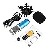 BM-800 Portable Professional Großmembran Studio Aufnahme und Rundfunk Kondensatormikrofon mit Shockproof Mount
