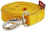 #6: Choostix Dog Belt Flat, Medium (1 Piece) (color may vary)