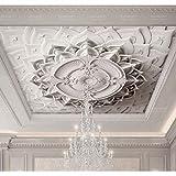 BIZHIGE Plâtre Blanc 3D Papier Peint De Plafond pour Salle De Séjour 3D Mur Plafond Mural 3D Murale De Mur 3D Papier Peint Grande Murale,250 X 200Cm (7.6X6.5 Ft) - Can Be Customized