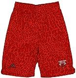 Adidas Performance Chicago Bulls NBA Big garçons Youth Crazy clair Short de Basketball pour Homme, Rouge, Large (14–16)–Rouge