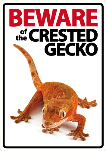 Magnet & Steel Beware of the CRESTED Gecko A5 Schild (Weihnachts-gecko)