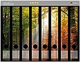 Wallario Ordnerrücken Sticker Sonnenuntergang im Herbstwald in Premiumqualität - Größe 8 x 3,5 x 30 cm, passend für 8 Schmale Ordnerrücken