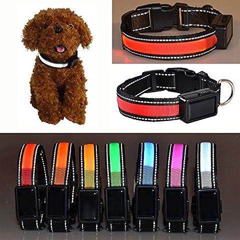 Aution House USB Recargable Collar Reflectante Luces que Destellan LED Admiten la Seguridad del Perro, Impermeable, Apto para Pequeña, Mediana, Grande Mascotas / Perro (L 50-60CM, ROJO)