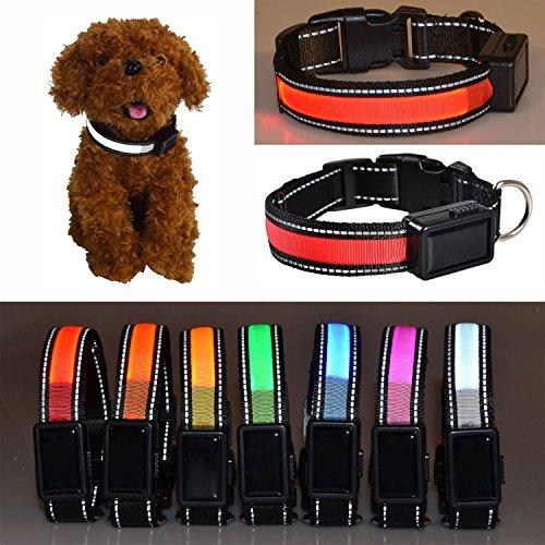 Aution House USB Ricaricabile Collare Riflettente Luci Lampeggianti LED Animali di Sicurezza del Cane, Impermeabile, Misura per Piccolo Medio Grande Cane di Animali Domestici (L 50-60CM, ROSSO)