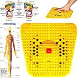 ZIAS Acupressure Slimming Power Mat with 18 Bio +Magnets Pyramids Back Pain for Pain Relief for Heel Knee Foot Leg Pain Sciatica Cramps Migraine Massager PACK OF 1