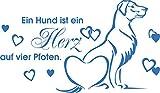 GRAZDesign 640091_30_053 Wandtattoo Spruch ein Hund ist ein Herz … | Wandsticker für Wohnzimmer | Hunde Sprüche Hundesalon (52x30cm//053 hellblau)