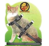 Cat Harness And Leashes