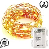 LTETTES 3 AA Battery Operated Portable Waterproof Copper 30 LED String Lights, 3 m (Warm White)