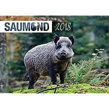 Saumond 2018