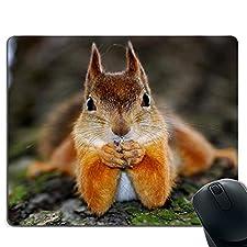 Gaming-Mauspad, genähte Kanten, rutschfeste Gummibasis, kompatibel mit Laser und optischer Maus - gutmütiges Eichhörnchen