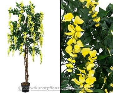 Goldregen Kunstbaum mit gelben Blüten, Höhe 150cm mit Zementfuß – Kunstpflanze Kunstbaum künstliche Bäume Kunstbäume Gummibaum Kunstoffpflanzen Dekopflanzen Textilpflanzen