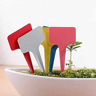 SwirlColor 50 Stück 6 x 10 cm Kunststoff-Anlage T-Typ Tags, Markierungen Re-Nutz Kindergarten Labels - zufällige Farbe von SwirlColor bei Du und dein Garten