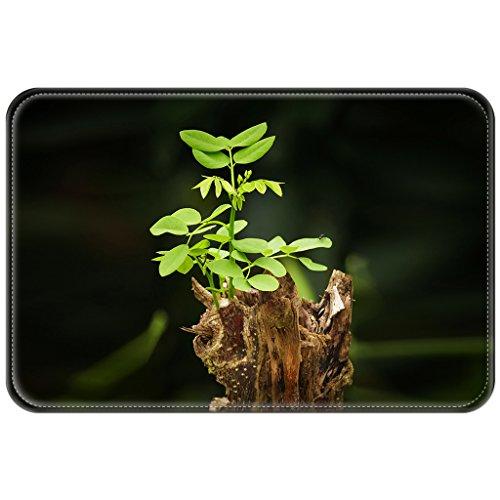 Violetpos Fußmatte 45 x 75 cm Grün Baum Neugeborene Fußmatten / Sauberlaufmatte für Innen & Außen (Dogge Golf)
