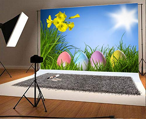 vrupi 7x5ft Vinyl Photography Backdrop Easter Eggs on Grass Background Yellow Flowers Blue Sky Sun Scene Photo Background Children Baby Adults Portraits Backdrop