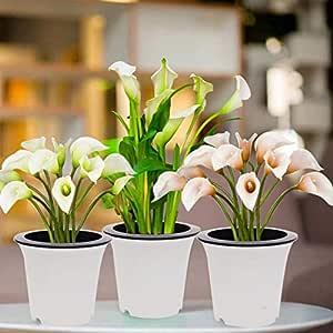 Kurtzy Self Watering Flower Pot for Garden Planters Indoor Outdoor Living Room Bedroom Balcony Table Vase Home Decor Set of 3