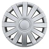 (Größe wählbar!) 15 Zoll Radkappen AGAT Silber (Farbe Silber) passend für fast alle Fahrzeugtypen (universell) - vom Radkappen König