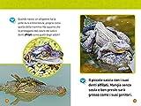 Da-girino-a-rana-Come-si-trasformano-gli-animali-Livello-1-Ediz-illustrata