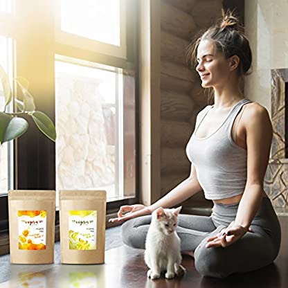 Vigera-Detox-Tee-Orange-100-g-Aromaschutz-Beutel-Hergestellt-in-Deutschland