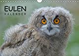 Eulen-Kalender (Wandkalender 2018 DIN A4 quer): Faszinierende Portraits und Flugaufnahmen europäischer Eulen (Monatskalender, 14 Seiten ) (CALVENDO Tiere) [Kalender] [Apr 01, 2017] Wolf, Gerald