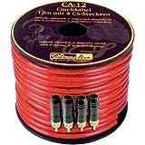 Câble Sinus Live CA-12 avec 4 connecteurs RCA