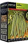 Semillas Leguminosas - Judia Enana Contender  100 Gr. - Batlle