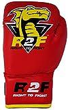 R2F Sports Dragon Kids Leder Boxen Handschuhe Ausbildung Sparring