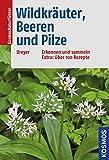Wildkräuter, Beeren und Pilze: Erkennen und sammeln Extra: über 100 Rezepte