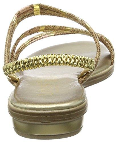 Lotus Calandra, Sandales femme Or - Gold (Gold Gold)